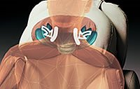 Fotel Europa III - masaż karku